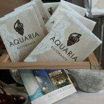 Photo of Aquaria