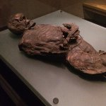 The bog bodies are eerily fascinating. Huge gold exhibit and Medieval section.