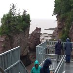 The stairs at hopewell rocks