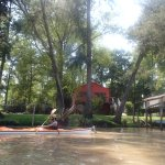 Kayaking the Tigre Delta...