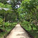 Erakor Island Resort & Spa resmi