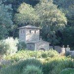 Foto de Castello di Amorosa