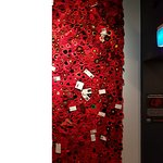 Crocheted poppies remembering soldiers