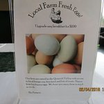 Local eggs available