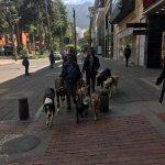 Foto de NH Bogota Boheme Royal