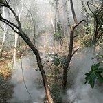Photo de Sai Yok National Park