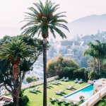 Palm Trees, lawns and pools