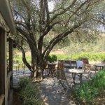 Skillogalee Winery & Restaurant resmi