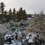 하얀 겨울 아침