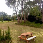 One of our picnic/ outdoor relaxing areas