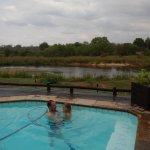 brincando na piscina e esperando os elefantes aparecerem.