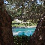 Repos et calme à l'ombre des oliviers centenaires