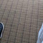 尼亞加拉瀑布景觀希爾頓套房酒店照片