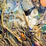 inside interpretive center - art from trash found