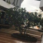 HG Tenerife Sur Apartments Foto