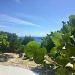 Foto Jackie's on the Reef