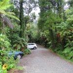 Photo of Te Nikau Retreat