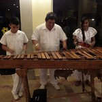 Local musicians perform nightly