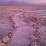 Photo of Salar de Atacama
