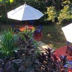 Guava Limb Cafeの写真