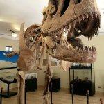 Photo of Cretaceous Park