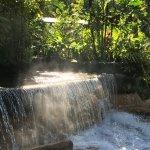 Foto de Tabacon Thermal Resort & Spa