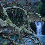 Φωτογραφία: Todoroki Falls