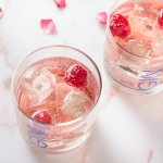 Lakes Damson Gin and Rose Lemonade