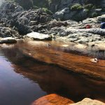 Photo of Garden Route (Tsitsikamma, Knysna, Wilderness) National Park