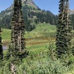 Tipsoo Lake views