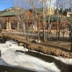 Foto de Murphy's River Lodge