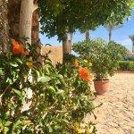 Photo of Queen Sharm Resort