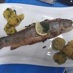 Fischwoche im fido's