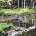 Foto de Four Seasons Resort Chiang Mai