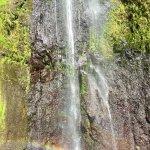 Photo of Isla Ometepe