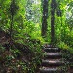 Foto de Vermont Nature Trail