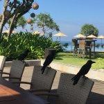 Foto de The Fortress Resort & Spa
