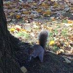 Sarabeth's Central Park South