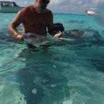 Foto de Cayman Eco Adventures