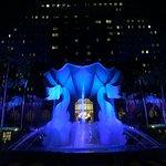 Walt Disney World Dolphin Foto