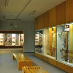 Photo of The Latvian Museum of Natural History