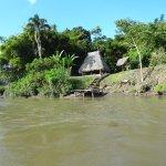 Photo of La Selva Amazon Ecolodge
