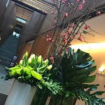 Photo de Inspira Santa Marta Hotel