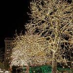 Temple Square Foto
