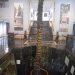 Photo de Museo Municipal de Guayaquil
