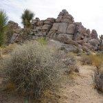 Cap Rock Nature Trail