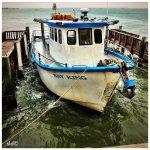 Foto van Pier 19