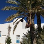 Photo of El Mouradi Djerba Menzel