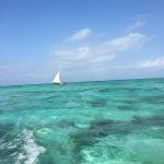 Photo of Zanzibar Watersports