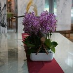 Green World Hotel Sansui Foto